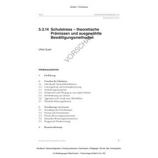 Schulstress - theoretische Prämissen und ausgewählte Bewältigungsmethoden