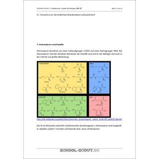 Amionsäuren- und Eiweißgruppen